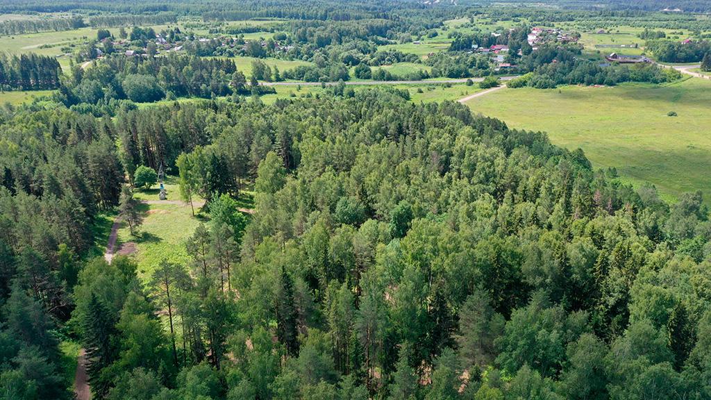 Ландшафт Экопоселок Русский лес